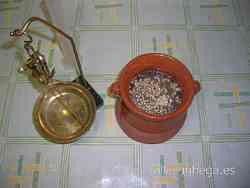 Cola de conejo, una vez pesada,en vasija vidriada antes del proceso del inflado